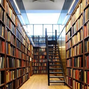Библиотеки Левокумского